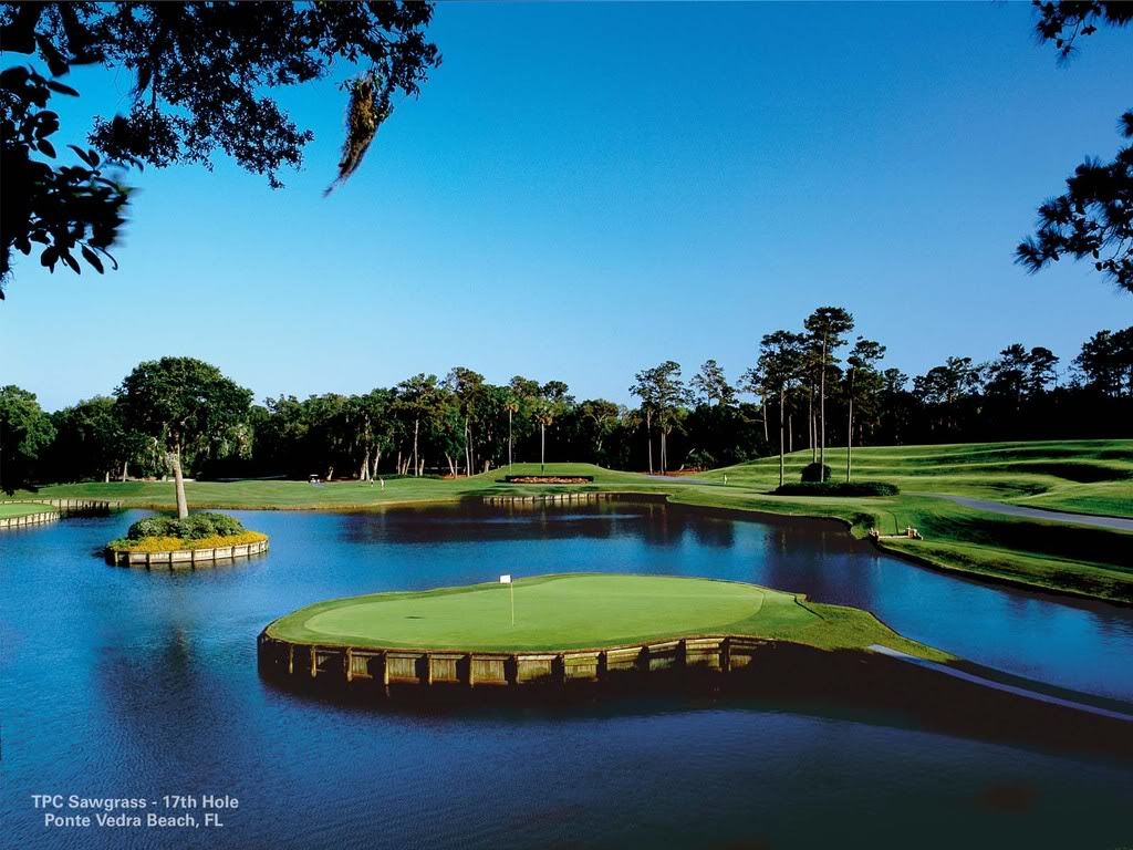 Memorable Moments @ TPC Sawgrass #17