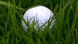 golf ball in tall grass or rough